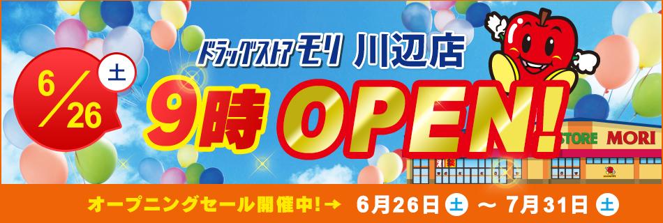 ドラッグストアモリ川辺店  6/26(土)オープン!オープニングセール6/26(土)~7/31(土)